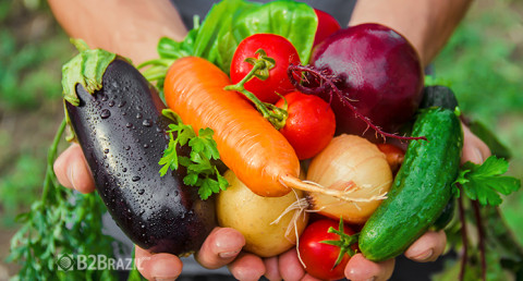 Mercado de alimentos orgânicos e a pandemia