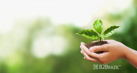 Sustentabilidade e o Mercado Internacional
